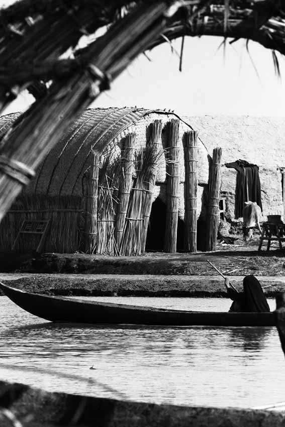 A woman in her canoe with the classical shape of the 'Mudhif', village meeting house, behind. W10090