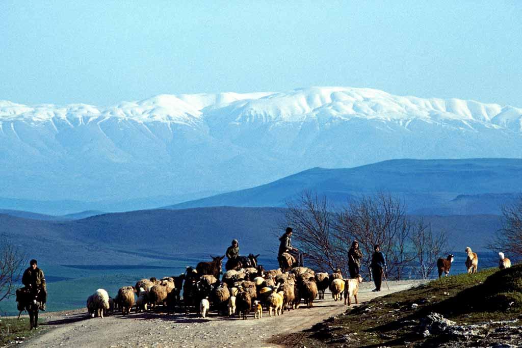 Kurdish-herders-in-eastern-Turkey