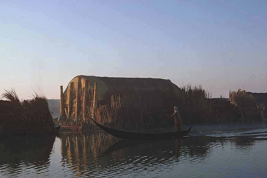 Marsh Arab woman punting her elegant 'tarada' - long slender canoe. The typical reed building is called a 'mudhif, a guest house and meeting place'. W5779