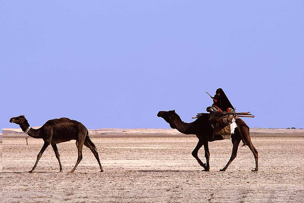 Al-Murrah Bedouin woman travelling with young boy in her arms in Saudi Arabia's Empty Quarter. W6027