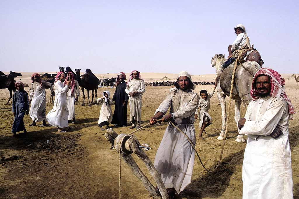 Bedouins hauling water from well for camels and people in the Rub al-Khali, the Empty Quarter of Saudi Arabia. W10371