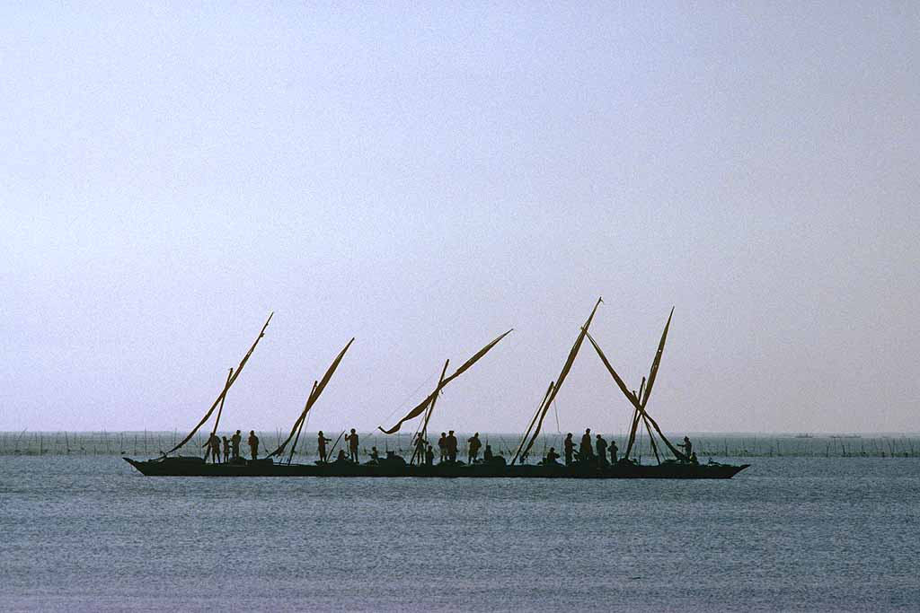 Five fishing boats tied together in the shallow waters of Lake Manzala, Egypt. W10654