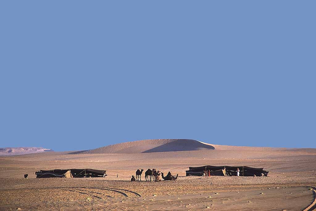 Al-Murrah Bedouin camp in the Rub al-Khali, the Empty Quarter, of Saudi Arabia. W5632