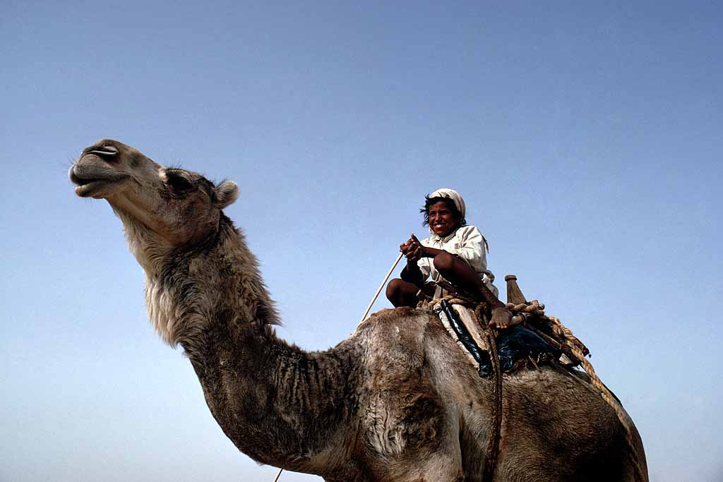 Al-Murrah Bedouin boy rides in the Rub al-Khali, Saudi Arabia's Empty Quarter. W5637