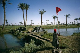 Nile Delta. Ancient irrigation system using waterwheels. The women with red hats signal opening and closing of channels. W6006